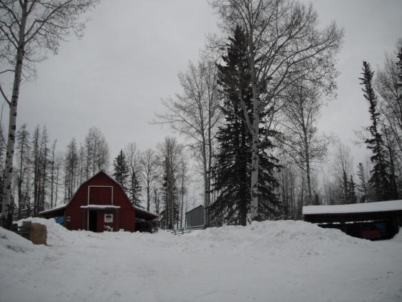 Barnyard snow piles2