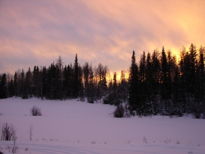 A typical Cariboo sunset