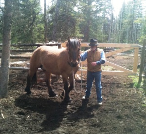 Horse and handler both have to be comfortable with each other